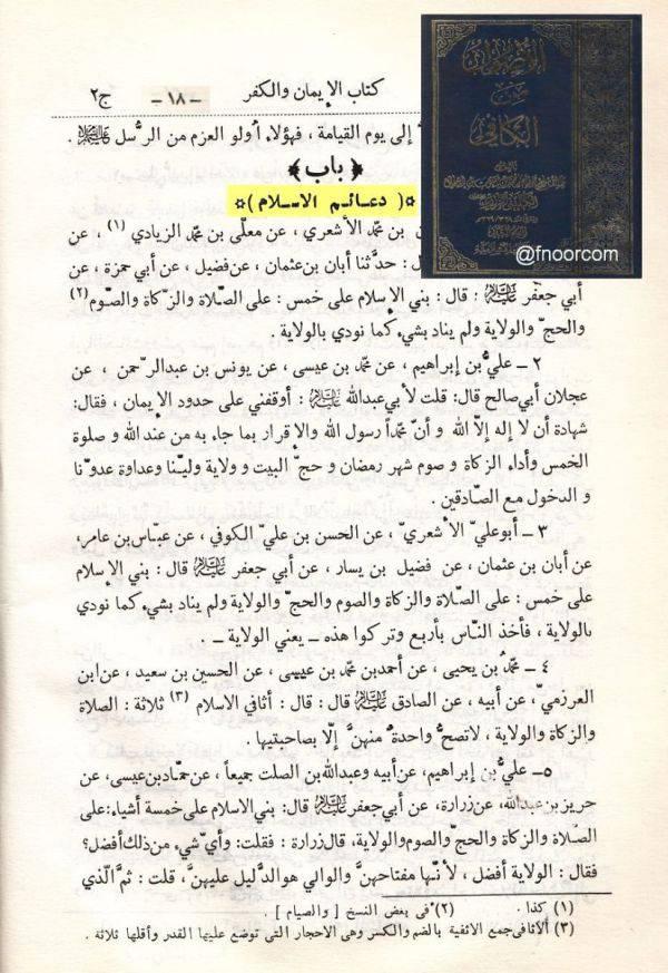اركان الاسلام عند الشيعة